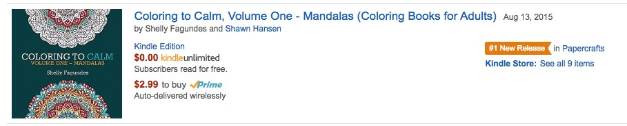 #1 New Release on Amazon!