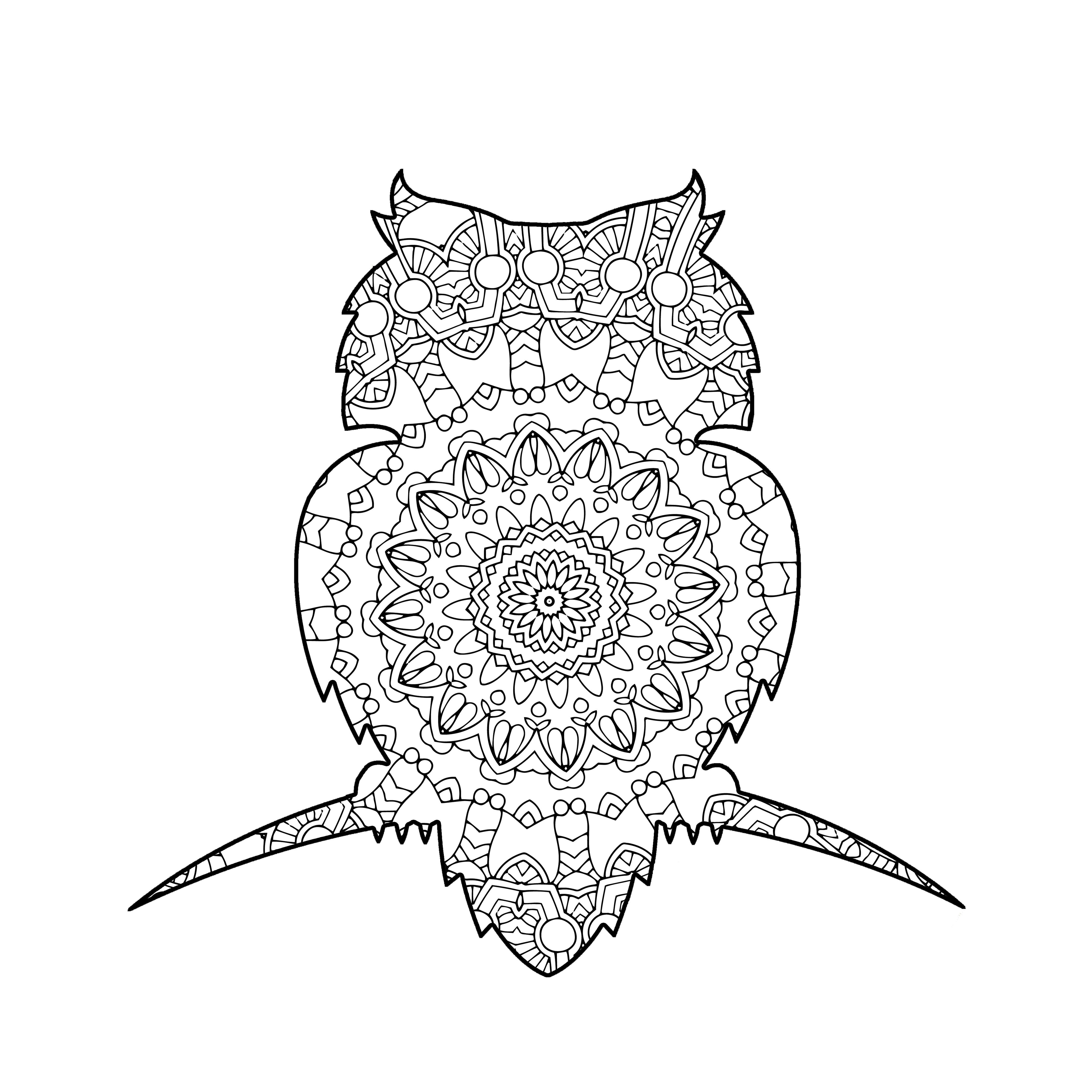 coloring to calm  volume three  u2013 animals